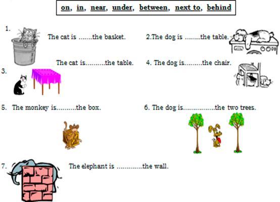 Ingilizce Dersi 4 Sinif 2 Dönem 1 Yazili Sorulari 1